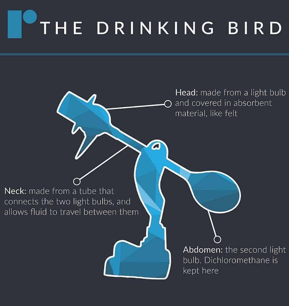 Drinking Bird 1 969x1024 - Uses of Dichloromethane