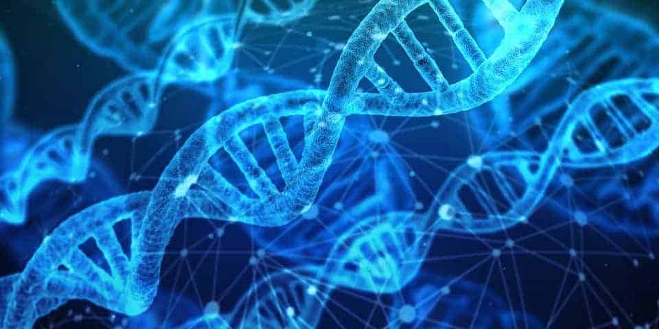 Semi-transparent blue strands of DNA