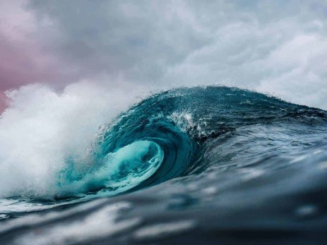 Uses of Synthetic Sea Water