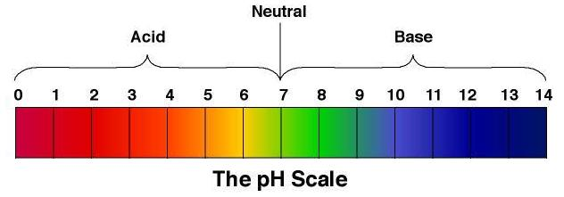 What are buffer solutions maintain pH balance