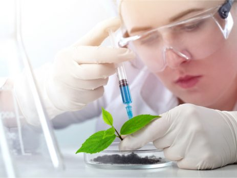 What can I do with a biochemistry degree